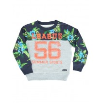 132933 Encounter small boys sweatshirt gray melange (5 pcs)