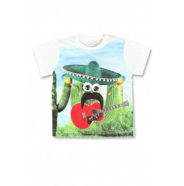 Baby boys shirt combo 1 cactus (4 pcs)