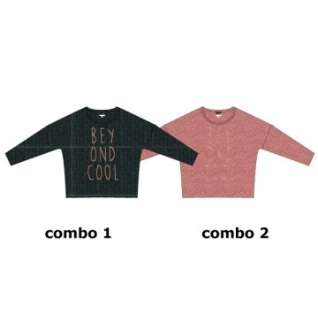 134610 Nocturne teen girls sweatshirt  combo 2 pink (6 pcs)