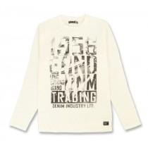 135367 Nocturne mens shirt 3 colors (24 pcs)