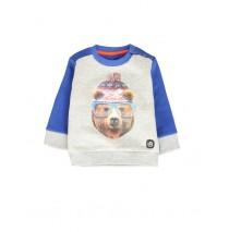 135518 Design Matters baby boys sweatshirt combo 1 grey melange (4 pcs)