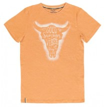 PsychotropicalTeen boys shirt combo 1 orange melange (6 pcs)