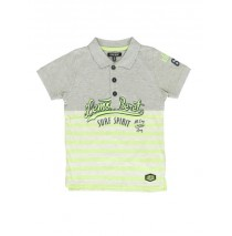 Psychotropical small boys polo combo 1 grey melange (6 pcs)