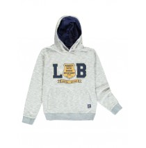 139938 Worldhood teen boys sweatshirt twisted grey + twisted medieval blue (12 pcs)