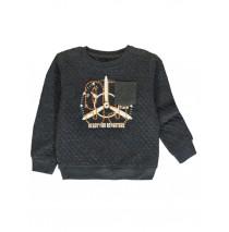 140492 The thinker small boys sweatshirt blue melange + dark grey melange (12 pcs)