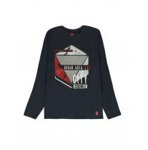 140515 Worldhood mens t-shirt grey + medieval blue + zinfandel (18 pcs)