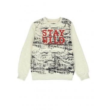 140686 Humanature teen boys sweatshirt light grey melange + outer space (12 pcs)