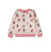 143661 Esteem small girls sweatshirt english rose+medieval blue (12 pcs)