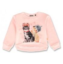 143944 Esteem small girls sweatshirt english rose+bachelor button (12 pcs)