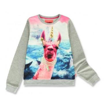 144269 Esteem teen girls sweatshirt grey melange+english rose (12 pcs)