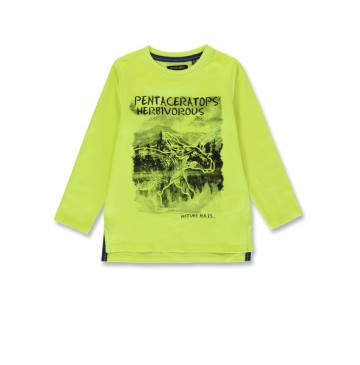 144334 Discovery world small boys shirt sulphur spring+olive night (12 pcs)