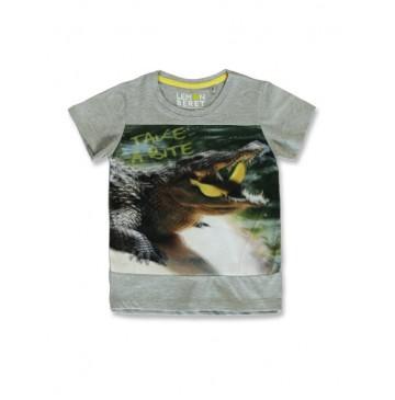 145635 Empower up small boys shirt grey melange+pesto  (12 pcs)
