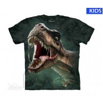 TRex Roar Child T Shirt (4 pcs)