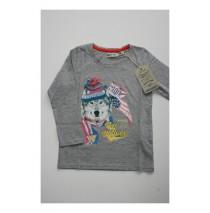 Offbeat shirt Combo 2 grey melange (2 pcs)