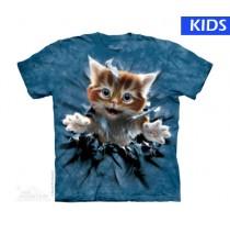 Ginger Kitten Breakthru Small Child T Shirt (3 pcs)